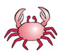 Horoscope: Cancer